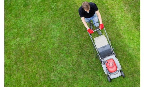 How to Mow a Lawn with a Push Mower | Homefrik's Guide